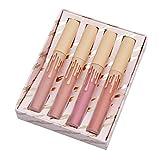 VWH 4 Farben Wasserdichte Licht Flüssigkeit Lipgloss Lippenstift Kosmetik