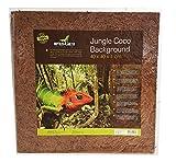 Reptiles Planet Rückwand für Reptilien/Amphibien Jungle Coco Background 40x 40x 1cm